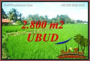 Tanah Murah di Ubud Dijual TJUB726