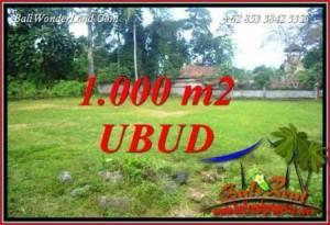 Tanah Murah di Ubud 10 Are di Ubud Pejeng