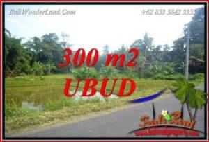Tanah Dijual di Ubud Bali TJUB730