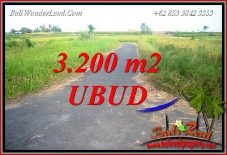 JUAL Tanah di Ubud Bali 3,200 m2 di Ubud Singapadu