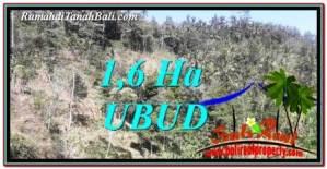 TANAH MURAH di UBUD BALI DIJUAL 16,000 m2 View Tebing dan Sungai
