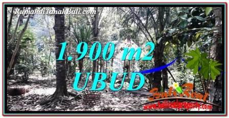 TANAH MURAH JUAL UBUD 1,900 m2 View Sawah dan Sungai Kecil