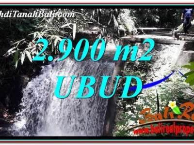 DIJUAL MURAH TANAH di UBUD BALI 29 Are di Ubud Pejeng