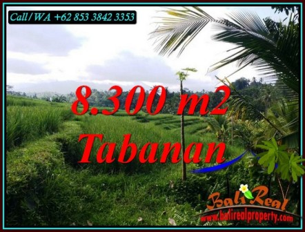 JUAL TANAH MURAH di TABANAN BALI 8,300 m2 VIEW SAWAH, SUNGAI DAN GUNUNG