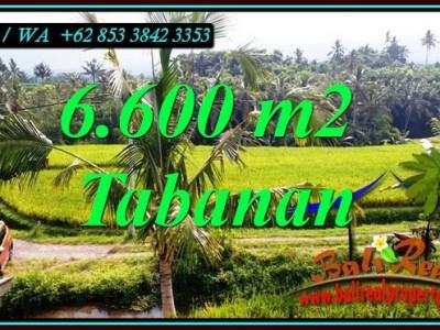 JUAL TANAH MURAH di TABANAN TJTB499C