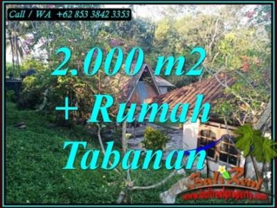 JUAL TANAH MURAH di TABANAN BALI Untuk INVESTASI TJTB455
