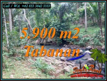 TANAH MURAH JUAL di TABANAN BALI 59 Are VIEW SUNGAI