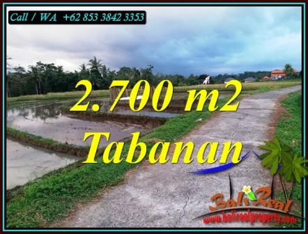 DIJUAL TANAH DI TABANAN BALI 2,700 m2 di SELEMADEG TABANAN
