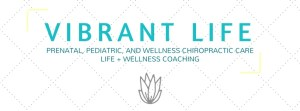 vibrant life chiropractic workshop