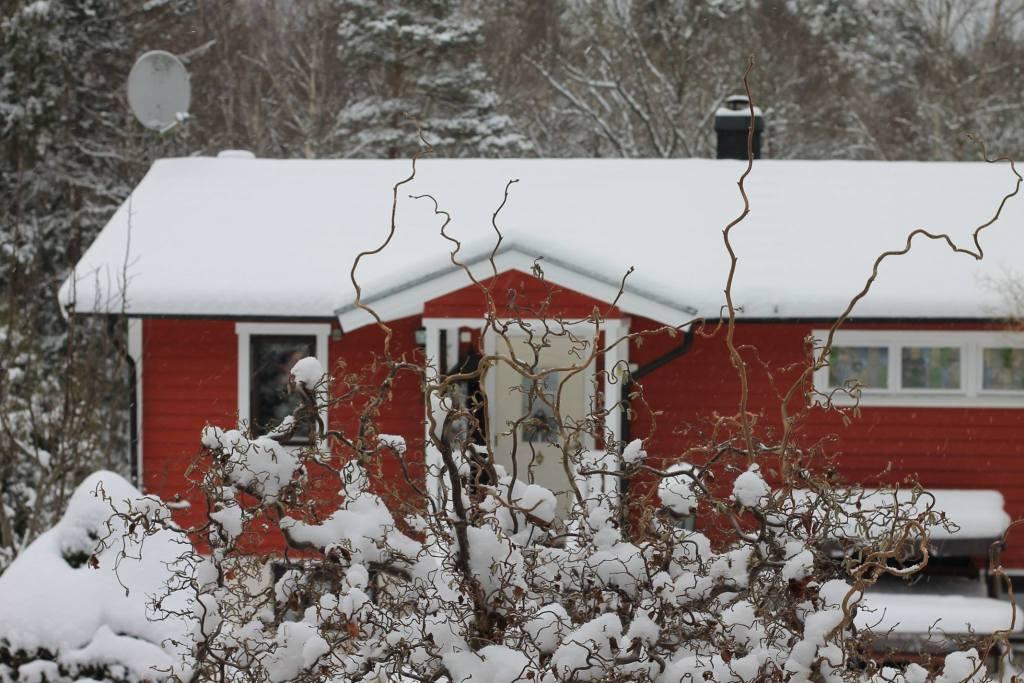 Hemma. Ett hus vid skogens slut.