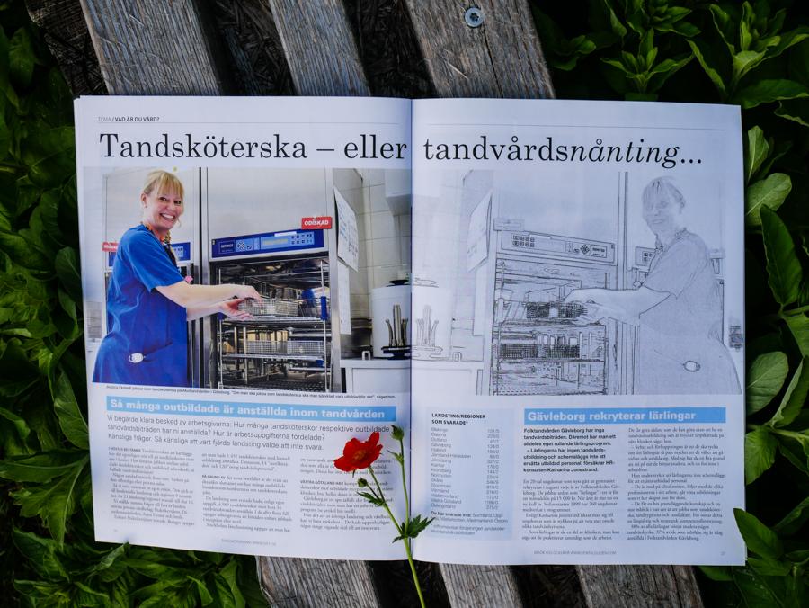 Svenska Tandsköterskeförbundets tidning Tandsköterskan nr 2 2018. Tema lön.
