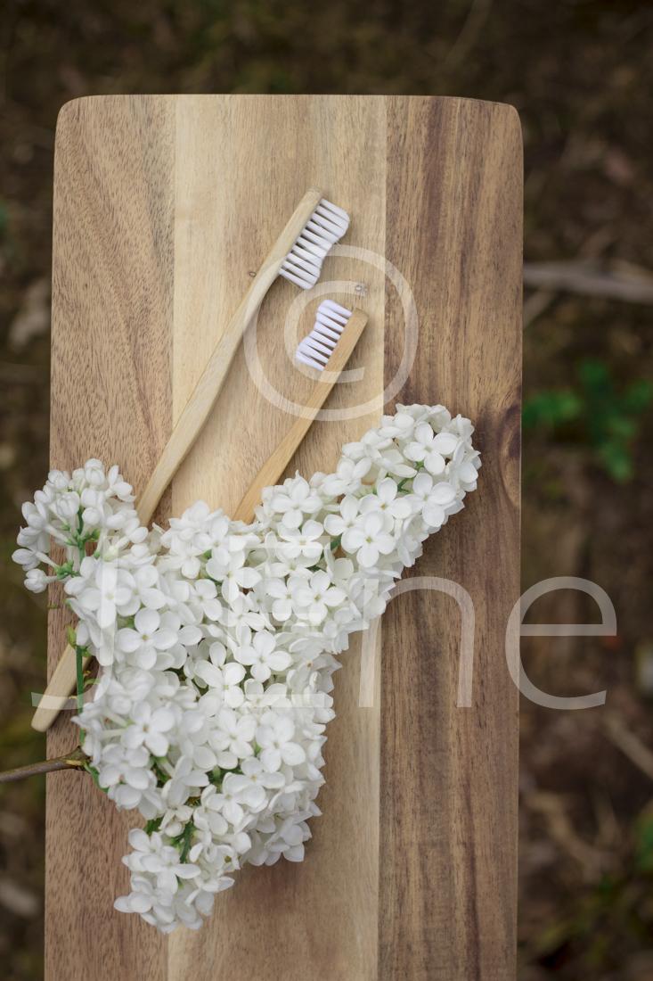 Tandborstar i bambu med vita borststrån tillsammans med en kvist blommande vit syrén på en träbricka.