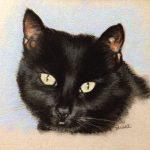 pastel of black cat