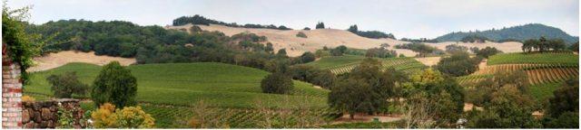 napa-valley-hotel-wine-tour-pkg-top