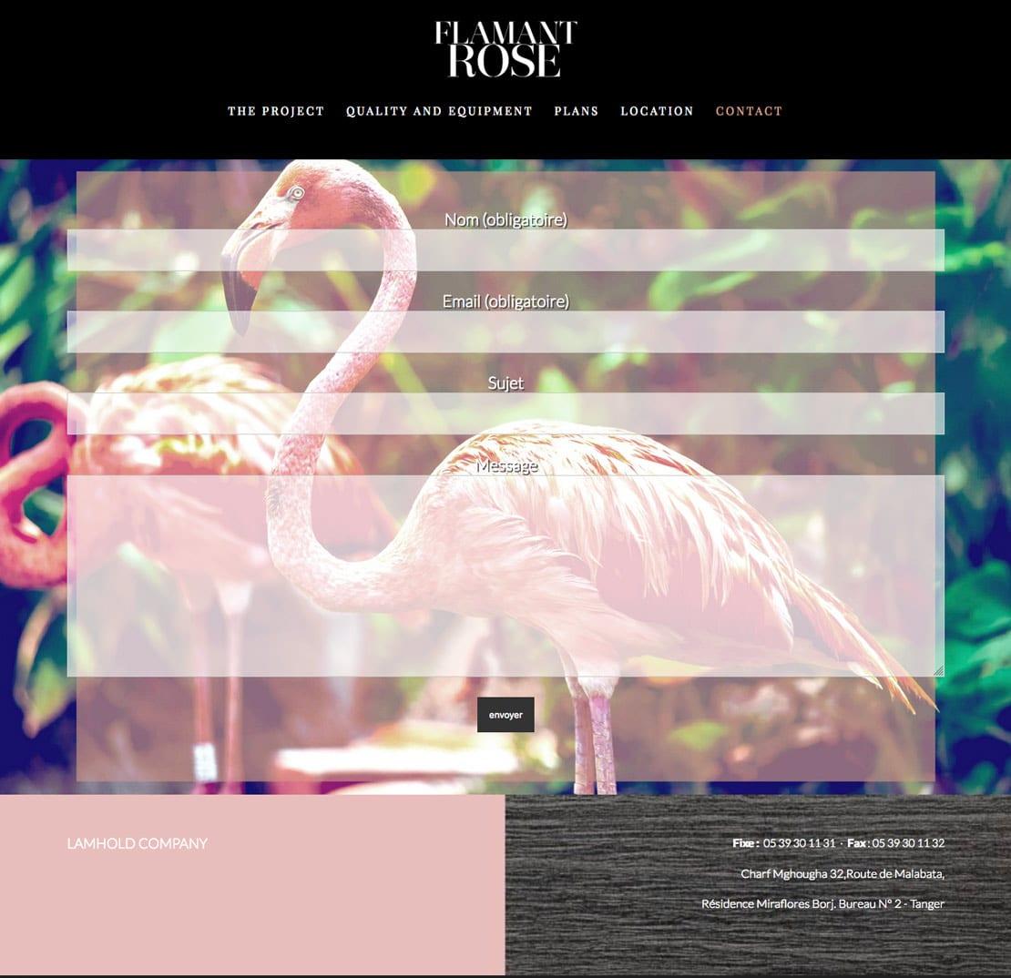 Flamant rose, diseño para web responsive
