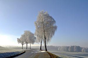 Zima w Wielkiej Brytanii