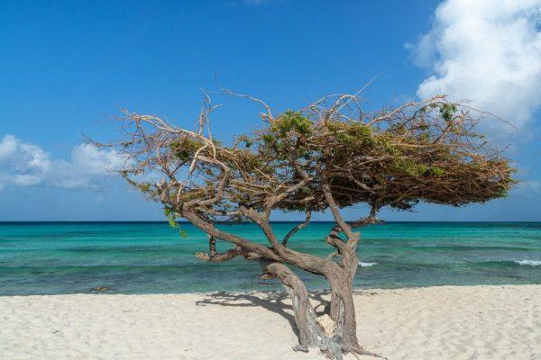 Karibik3