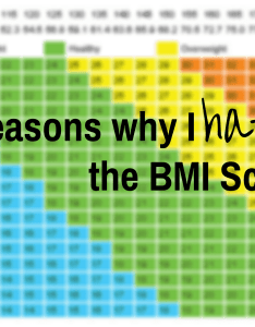 reasons why  hate the bmi scale also  tanja shaw rh tanjashaw