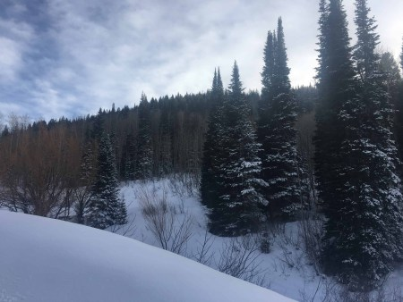 things to do in steamboat springs