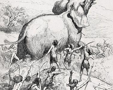 Il caso dei Clovis – La storia di un viaggio lungo milioni d'anni