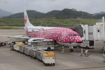 L'avion JAL