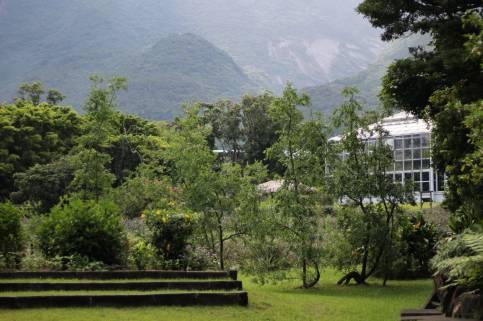 Yakushima 14 juillet (1)