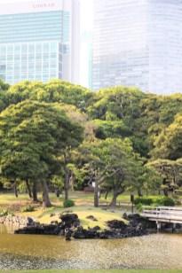 Hamarikiyu Gardens Tokyo (8)