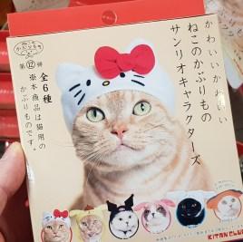 Bonnet de chat pour chat