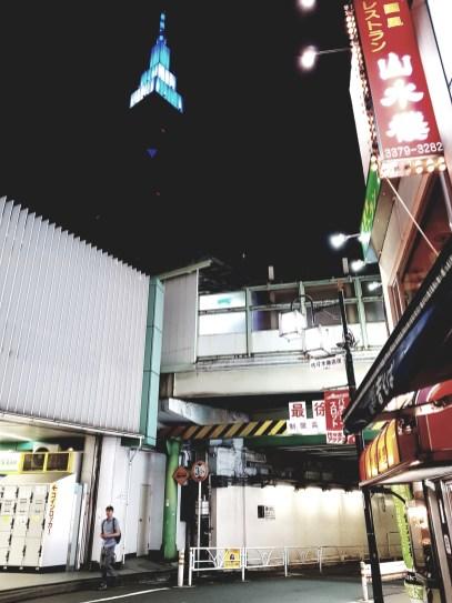 Yamanote Run (13)