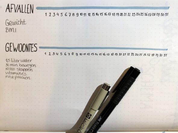 bullet journal setup voor januari