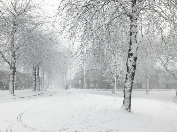 de eerste sneeuwpret is een feit