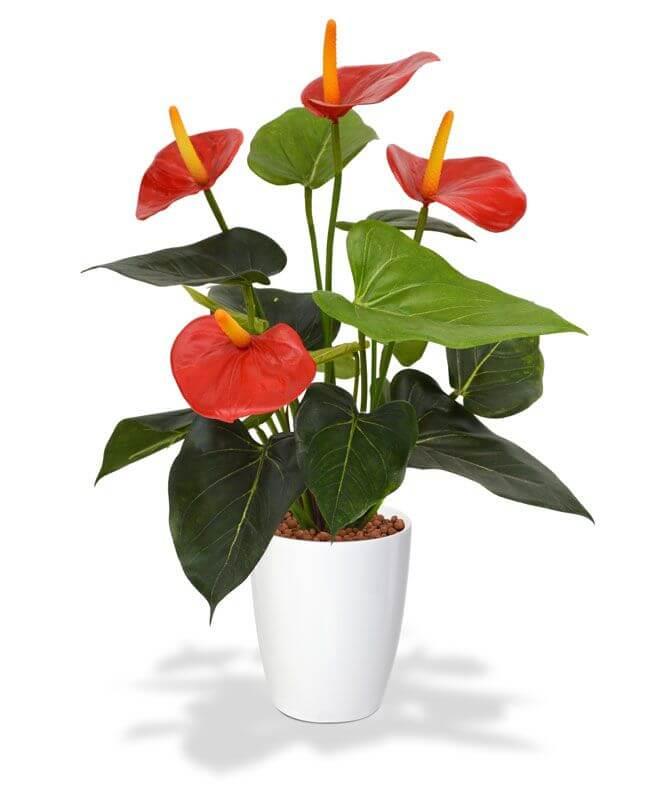 kunstplanten anthurium