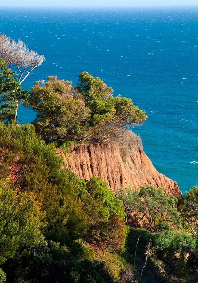 Landscape Photography - Ocean - Landscapes