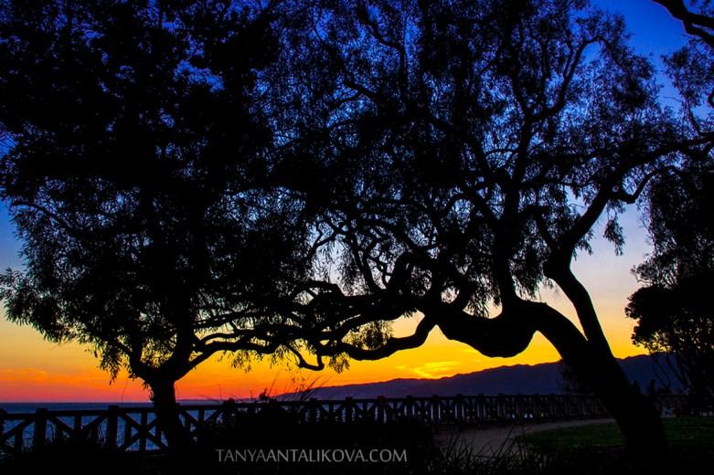 Santa Monica Landscape Photography by Tanya Antalikova