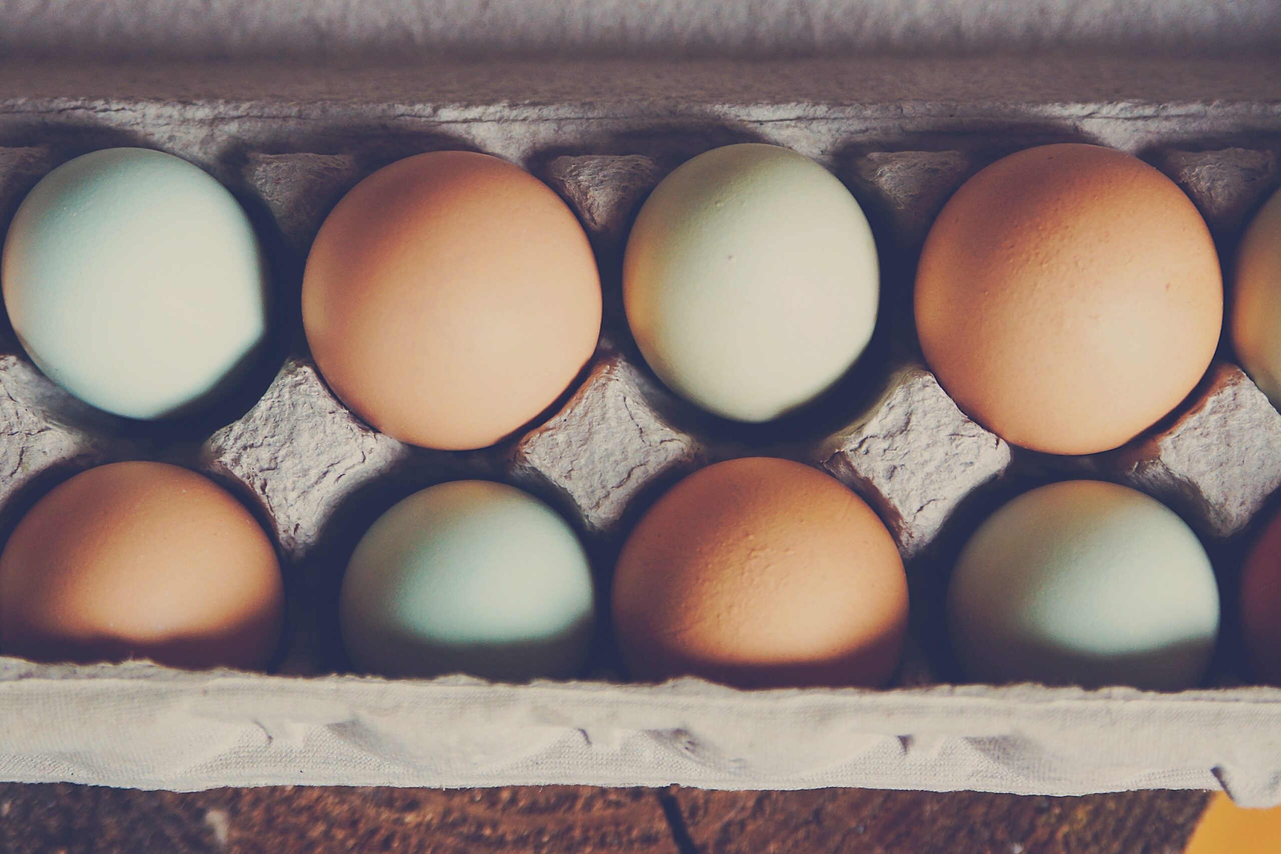 Are you the eggshell, the mine, or the foot?
