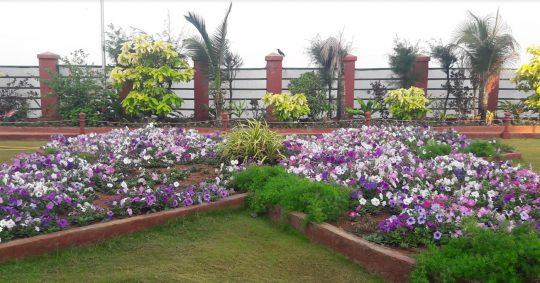 A Sunday evening stroll at the Aditya Vatika Garden. Photo courtesy: Poyani Mehta