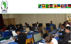 Africa Management Institute (ESAMI) Logo