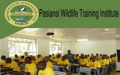 Banner of Wildlife Training Institute Pasiansi-Mwanza