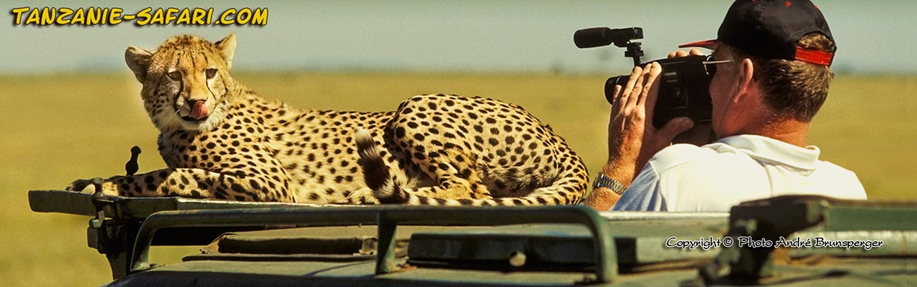 Combien coute un safari en tanzanie prix