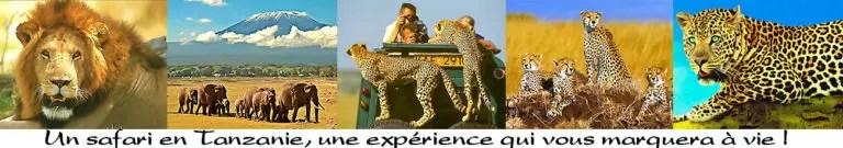 pourquoi safari cher en Tanzanie