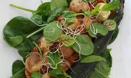 Zucchini gefüllt mit Tomatenpüree, Champignons und Spinat