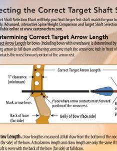 Arrow charts for spines and length also to use easton spine tradtalk forums rh