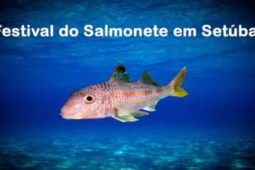 Festival do Salmonete