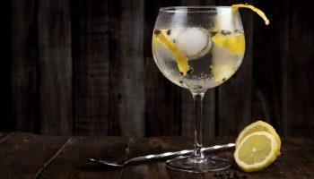 Cinco curiosidades sobre el gin tonic que quizás no conocías