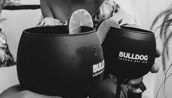 Bulldog sobremesa
