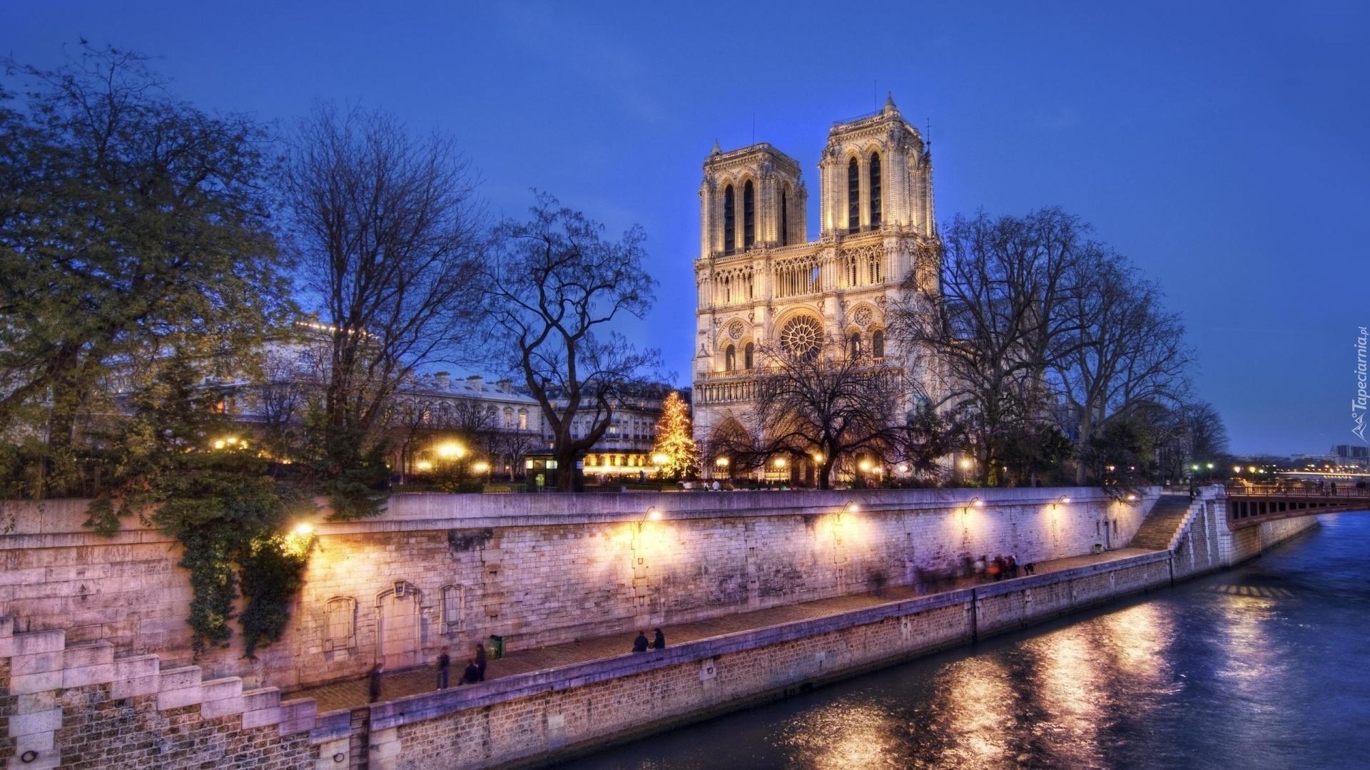 Fall In Paris Wallpaper Francja Katedra Notre Dame Paryż