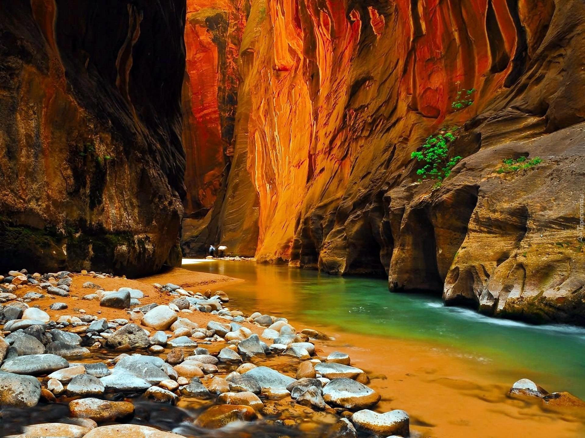 Havasu Falls Arizona Wallpaper Stany Zjednoczone Stan Utah Park Narodowy Zion Kanion