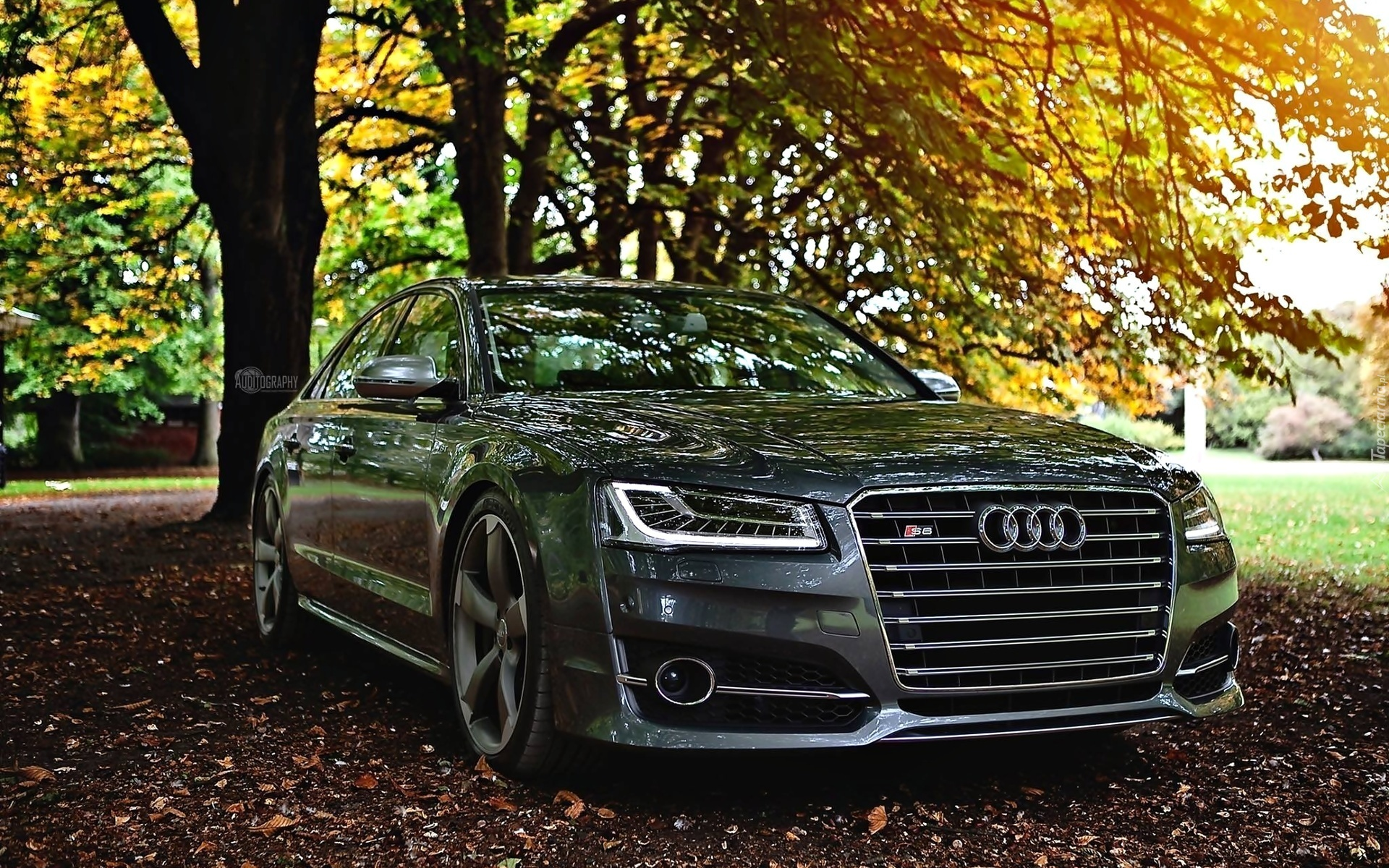 Audi A6 3d Wallpaper Tapety Audi A6