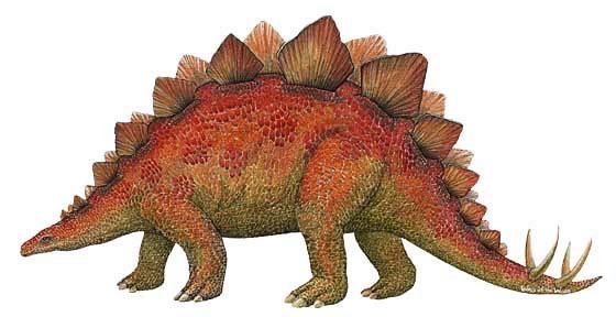 Wandsticker Dinosaurierwelt Stegosaurus klein  tapetenwelt