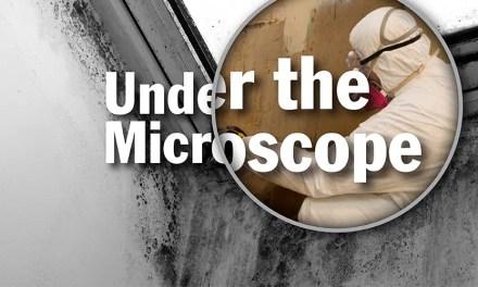 How do airtight containment systems prevent mold borne illness?